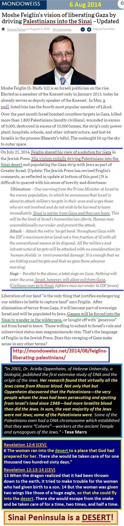 http://mondoweiss.net/2014/08/feiglins-liberating-palestinians/