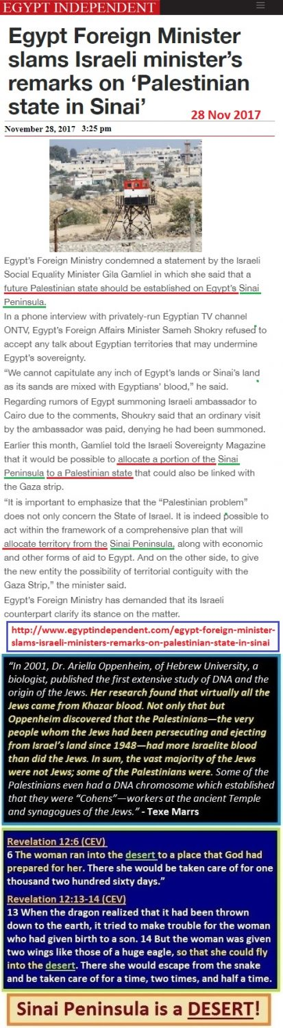 https://ww.egyptindependent.com/egypt-foreign-minister-slams-israeli-ministers-remarks-on-palestinian-state-in-sinai/