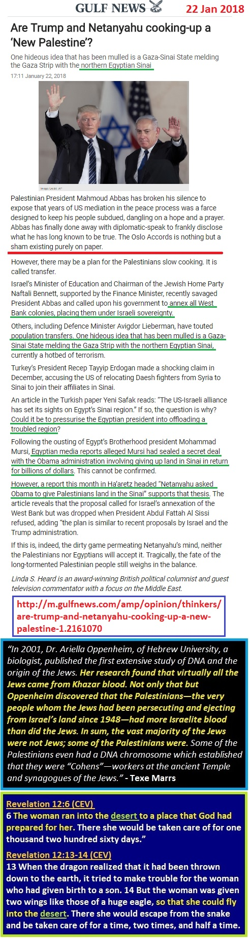 https://gulfnews.com/opinion/op-eds/are-trump-and-netanyahu-cooking-up-a-new-palestine-1.2161070