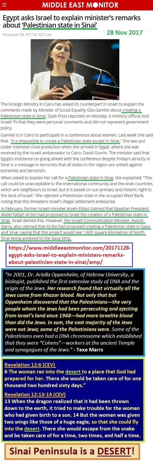 https://www.middleeastmonitor.com/20171128-egypt-asks-israel-to-explain-ministers-remarks-about-palestinian-state-in-sinai/