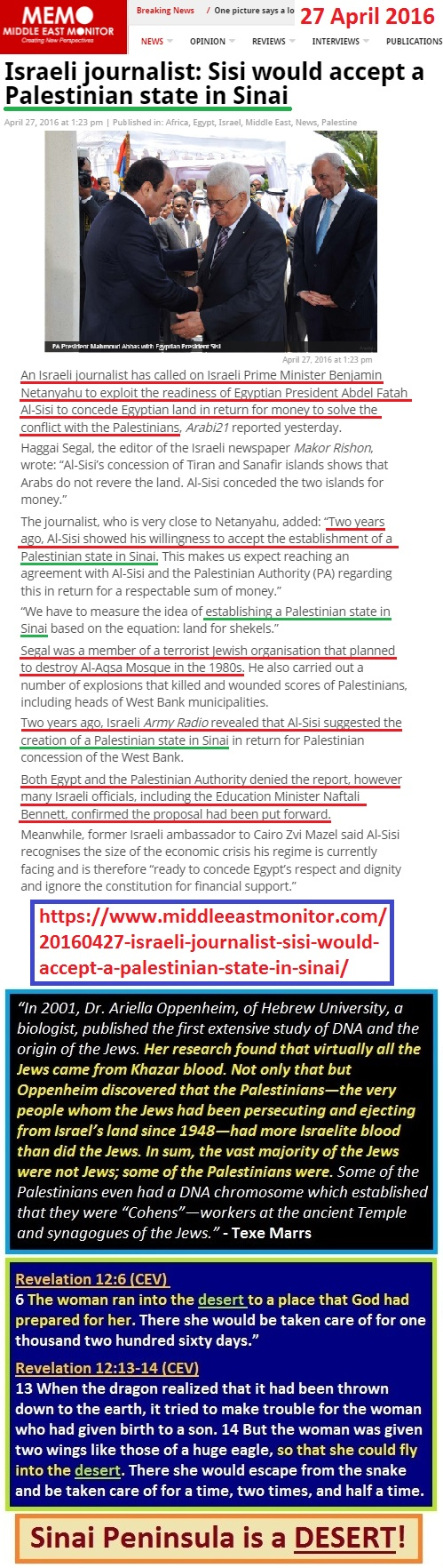 https://www.middleeastmonitor.com/20160427-israeli-journalist-sisi-would-accept-a-palestinian-state-in-sinai/