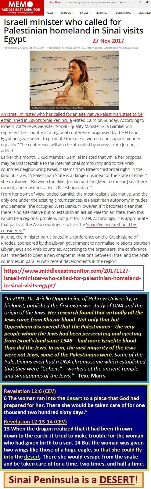 https://www.middleeastmonitor.com/20171127-israeli-minister-who-called-for-palestinian-homeland-in-sinai-visits-egypt/