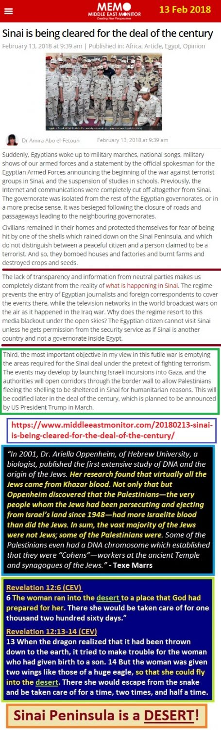 https://www.middleeastmonitor.com/20180213-sinai-is-being-cleared-for-the-deal-of-the-century/