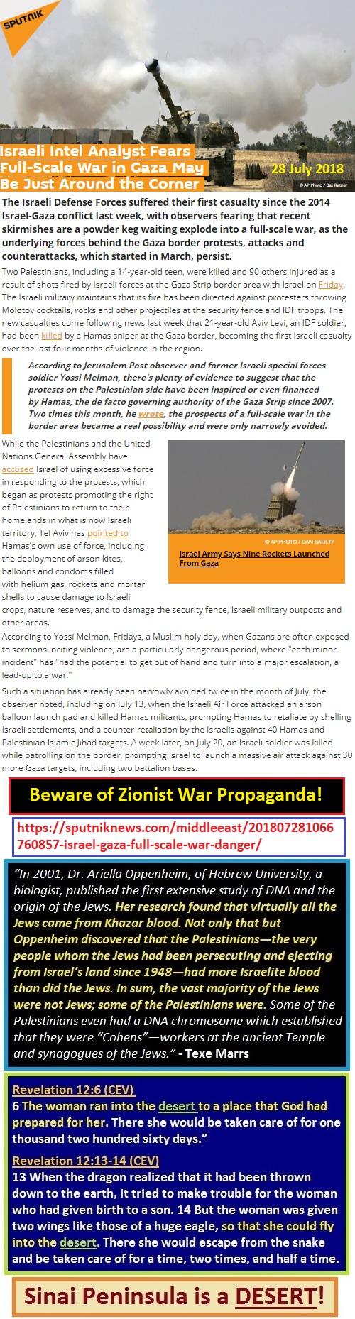 https://sputniknews.com/middleeast/201807281066760857-israel-gaza-full-scale-war-danger/