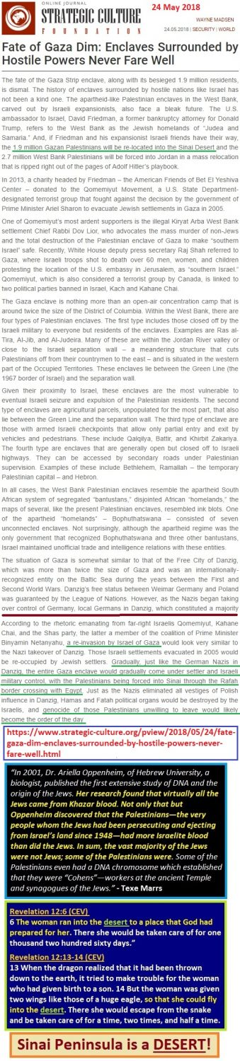 https://www.strategic-culture.org/news/2018/05/24/fate-gaza-dim-enclaves-surrounded-by-hostile-powers-never-fare-well/