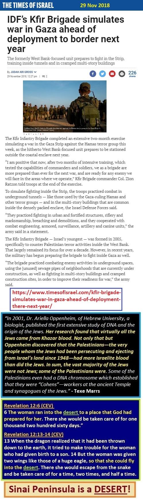 https://www.timesofisrael.com/kfir-brigade-simulates-war-in-gaza-ahead-of-deployment-there-next-year/