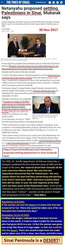 https://www.timesofisrael.com/netanyahu-proposed-settling-palestinians-in-sinai-mubarak-says/