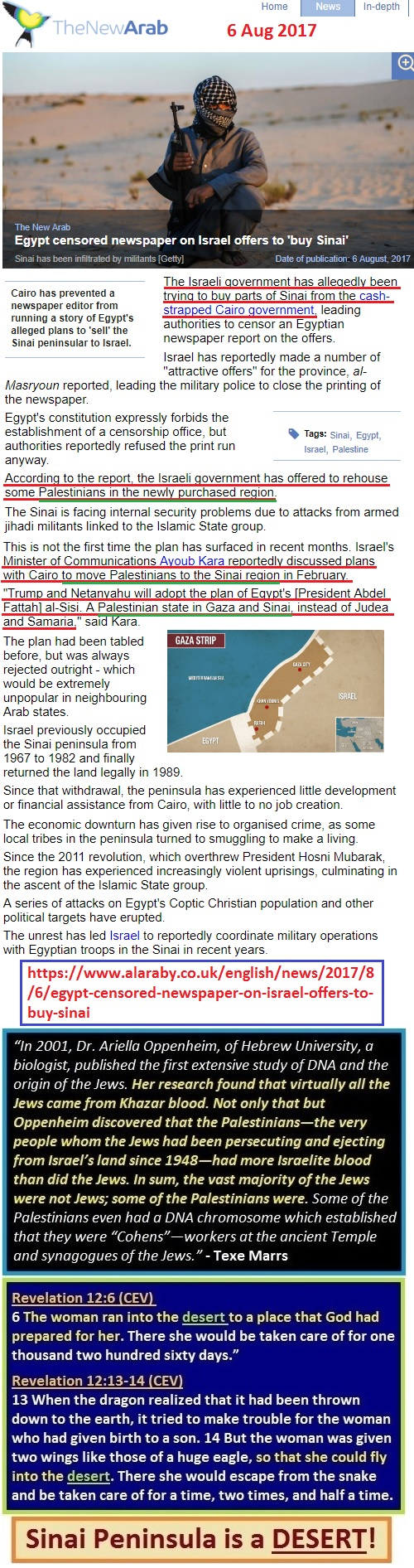 https://www.alaraby.co.uk/english/news/2017/8/6/egypt-censored-newspaper-on-israel-offers-to-buy-sinai